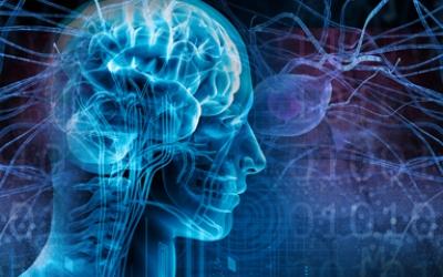 Integrative Neurophysiology Lab
