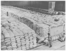 Herbert Hoover and Food Relief During World War I