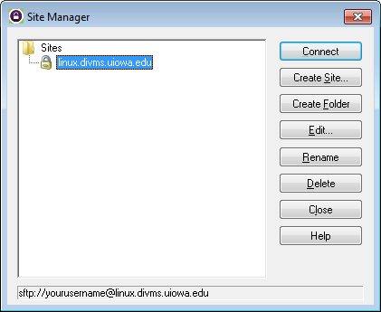 Screenshot of the WS FTP Pro Connection Wizard Site Manager screen