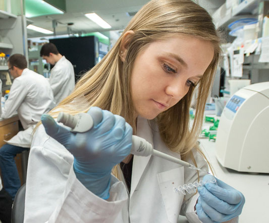 A student working in a lab examining a sample
