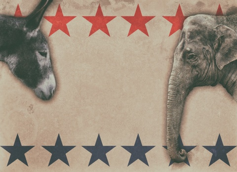 Donkey and elephant on star background