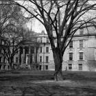 Schaeffer Hall from clinton street.